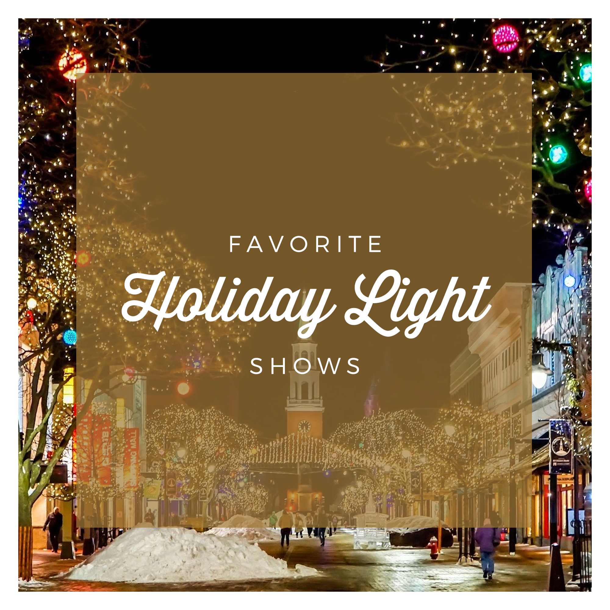 Best Holiday Light Displays in the Chicago land area